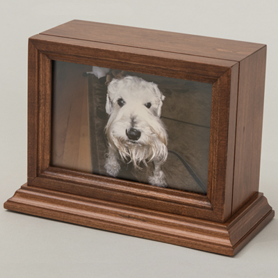 Wood Box With White Dog Photo