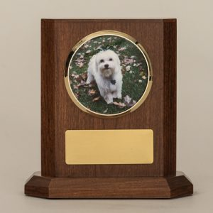 Wood Box With White Dog Photo & Gold Plate