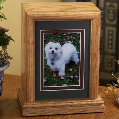 Wood Box With White Dog Photo